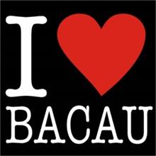 Scurt ghid turistic pentru orasul Bacau